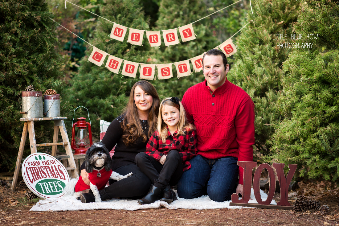 Christmas Tree Farm Mini Sessions.Little Blue Bow Photography Blog